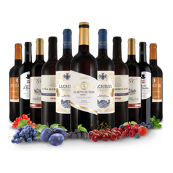 Probierpaket Viva España mit 11 Flaschen