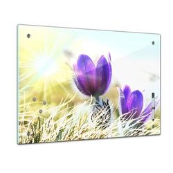 Bilderdepot24 Glasbild, Memoboard - Pflanzen & Blumen - lila Feldblumen 80 cm x 60 cm