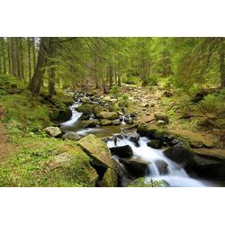 Fototapete Mountain River, glatt 4 m x 2,60 m