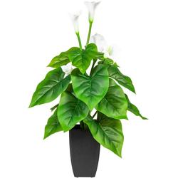 Künstliche Zimmerpflanze Salzach Calla, DELAVITA, Höhe 64 cm