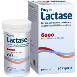 Lactase 6000 FCC