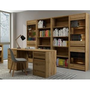 Büroeinrichtung Arbeitszimmer Büromöbel komplett FOREST SetA Schreibtisch Regale