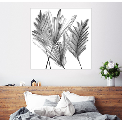 Posterlounge Wandbild, Blumenschattenbild I 30 cm x 30 cm