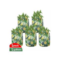 Abakuhaus Pflanzkübel hochleistungsfähig Stofftöpfe mit Griffen für Pflanzen, Dschungel Exotische Pflanzen Green Leaf 28 cm x 28 cm