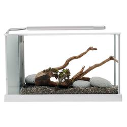 Fluval SPEC Süßwasser Aquarium Set, SPEC 5 - 21,1 l weiß (51,5 x 30,5 x 19,0 cm)