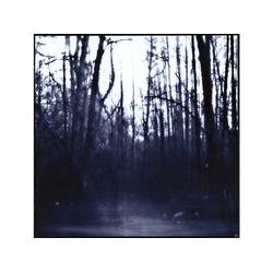 Weekend Nachos - Still (CD)