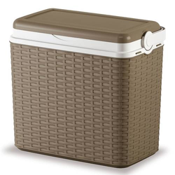 Kühlbox mit 2 Kühlakkus, 24l Fassungsvermögen Kühlbox Grau 24l