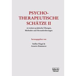 Psychotherapeutische Schätze II: Buch von