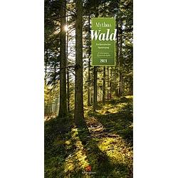 Mythos Wald 2021