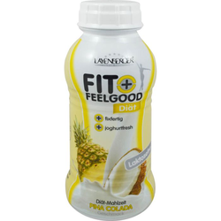 FIT+FEELGOOD fixfer.Diät-Shake Pina Colada 312 ml