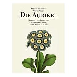 Die Aurikel. Marion Nickig  Brigitte Wachsmuth  - Buch