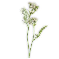 Kunstblume Dillkraut künstliche Pflanze 1 Stk Ø 6x56 cm cremefarben Dillkraut, matches21 HOME & HOBBY, Höhe 56 cm, Indoor