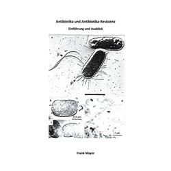 Antibiotika und Antibiotika-Resistenz: eBook von Frank Mayer