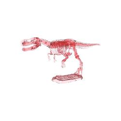 moses Lernspielzeug T-Rex: Cooles Leuchtskelett zum Ausgraben