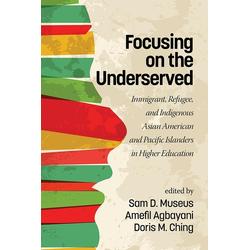 Focusing on the Underserved: eBook von
