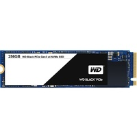 256GB (WDS256G1X0C)