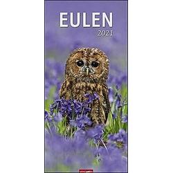 Eulen XL 2021