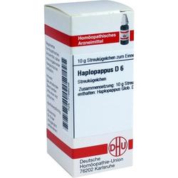 HAPLOPAPPUS D 6