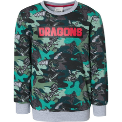 Dragons Sweatshirt Dragons Sweatshirt für Jungen 152/158