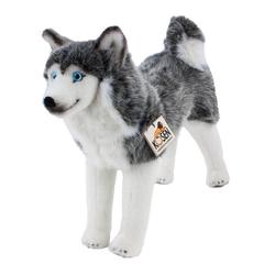 Kösen Kuscheltier Hund Husky Talon 37 cm stehend grau-weiß (Stoffhusky Plüschhusky Plüschhund Stoffhund, Hunde Huskys Plüschtiere)