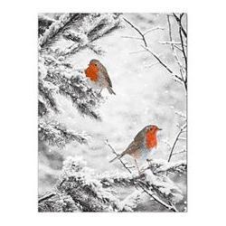 ABELLA Arte Wanddekoration Rotkelchen im Schnee ca. 60x80x3,2cm
