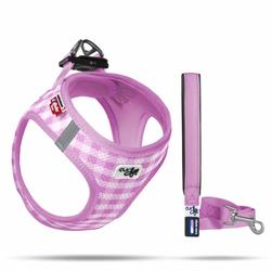 Curli Puppy Set - Vest Air-Mesh Geschirr & Leine