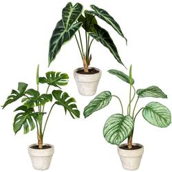 Künstliche Zimmerpflanze Set aus Grünpflanzen Grünpflanzen, Creativ green, Höhe 40 cm, im Zementtopf, 3er Set