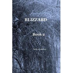 BLIZZARD Book 2 Linda Ann Martens als Buch von Linda Ann Martens