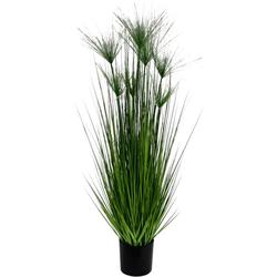 Kunstpflanze Zyperngras im Topf Zyperngras, I.GE.A., Höhe 150 cm
