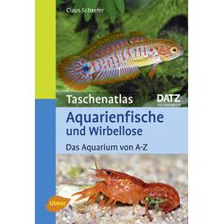 Taschenatlas Aquarienfische und Wirbellose als Buch von Claus Schaefer
