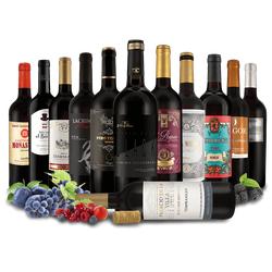 Probierpaket 12 Flaschen spanische Rotwein-Exzellenz