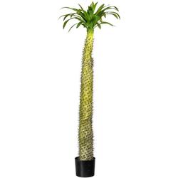 Künstliche Zimmerpflanze Madagaskarpalme Pachypodium Madagaskarpalme Pachypodium, Creativ green, Höhe 160 cm