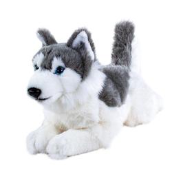 Teddys Rothenburg Kuscheltier (Hund Husky liegend 30 cm (mit Schwanz), Husky, Plüschhusky, Plüschtier, Plüschhunde, Stofftier, Stoffhunde)