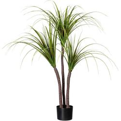 Künstliche Zimmerpflanze Drachenbaum Drachenbaum, Creativ green, Höhe 120 cm
