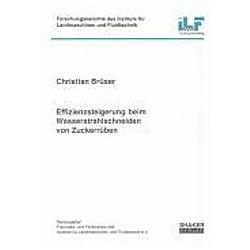 Effizienzsteigerung beim Wasserstrahlschneiden von Zuckerrüben. Christian Brüser  - Buch