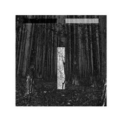 Chris Liebing - ANOTHER DAY (Vinyl)