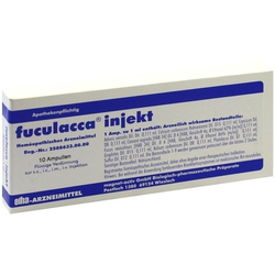 fuculacca