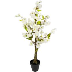Kunstbaum Kirschblütenbaum, I.GE.A., Höhe 78 cm, Im Topf weiß