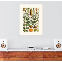 Posterlounge Wandbild, Antiker Gemüseteller in Französisch 60 cm x 80 cm