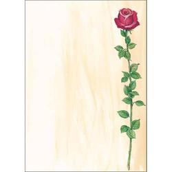 Designpapier Rose Bloom A4 90g/qm VE=25 Blatt