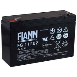 FIAMM Ersatzakku für Scooter Rollstühle Elektro-Scooter Elektrofahrzeug 6V 12Ah (ersetzt auch 10Ah), 6V, Lead-Acid