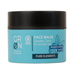 Groen Pure Face Balm - Blueberry & Sea Salt 50ml