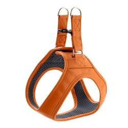 Hunter Hundegeschirr Hilo, Gr. XS: 33 - 37 cm Verstellmöglichkeit Hals, 36 - 39 cm Verstellmöglichkeit Bauch, orange