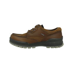 Outdoorschuhe Track 25 Low GTX Ecco braun