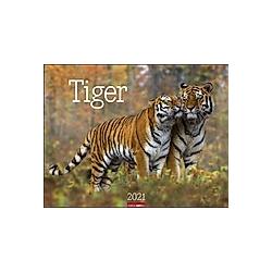 Tiger 2021