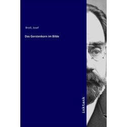 Das Gerstenkorn im Bilde als Buch von Josef Broili