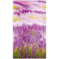 Bodenmeister Fototapete Lavendel Provence lila