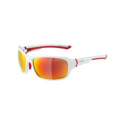 Sonnenbrille Alpina Lyron Ceramic