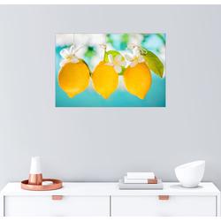 Posterlounge Wandbild, Saftige Zitronen 91 cm x 61 cm