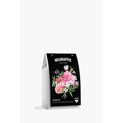Wildkaffee Äthiopien Guracho